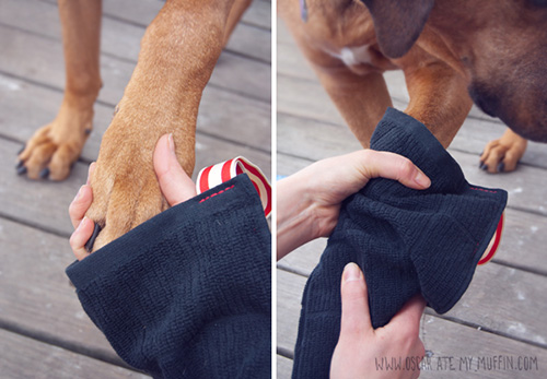 http://dog-milk.com/dog-i-y-easy-diy-mud-puppy-mittens/